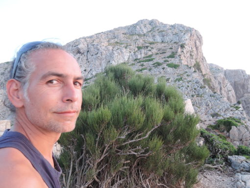 Laurent Vivet : création et entretien écologique d'espaces verts